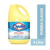 Lavandina Ayudín triple poder pureza glaciar (botella) 4 l.
